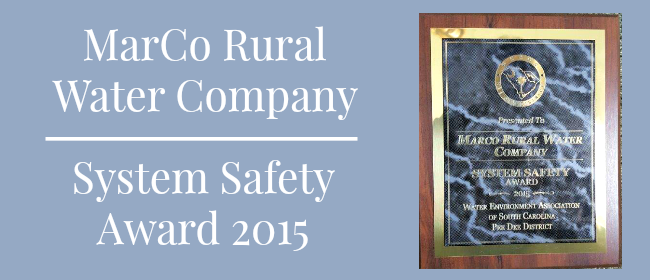 System Safety award