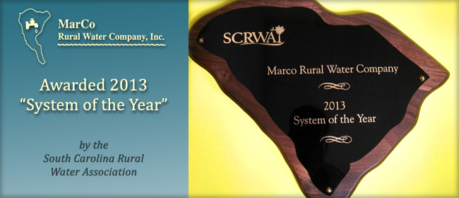 2013 System of the Year